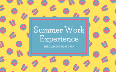 Summer Work Experience